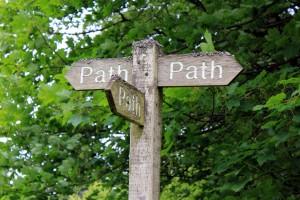 discernment paths