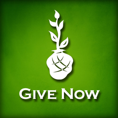 Immediate Online Giving, one-time or recurring. Set up online giving to contribute to one of our many ministries. No login required