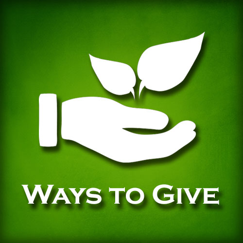 Learn about alternative ways to Give